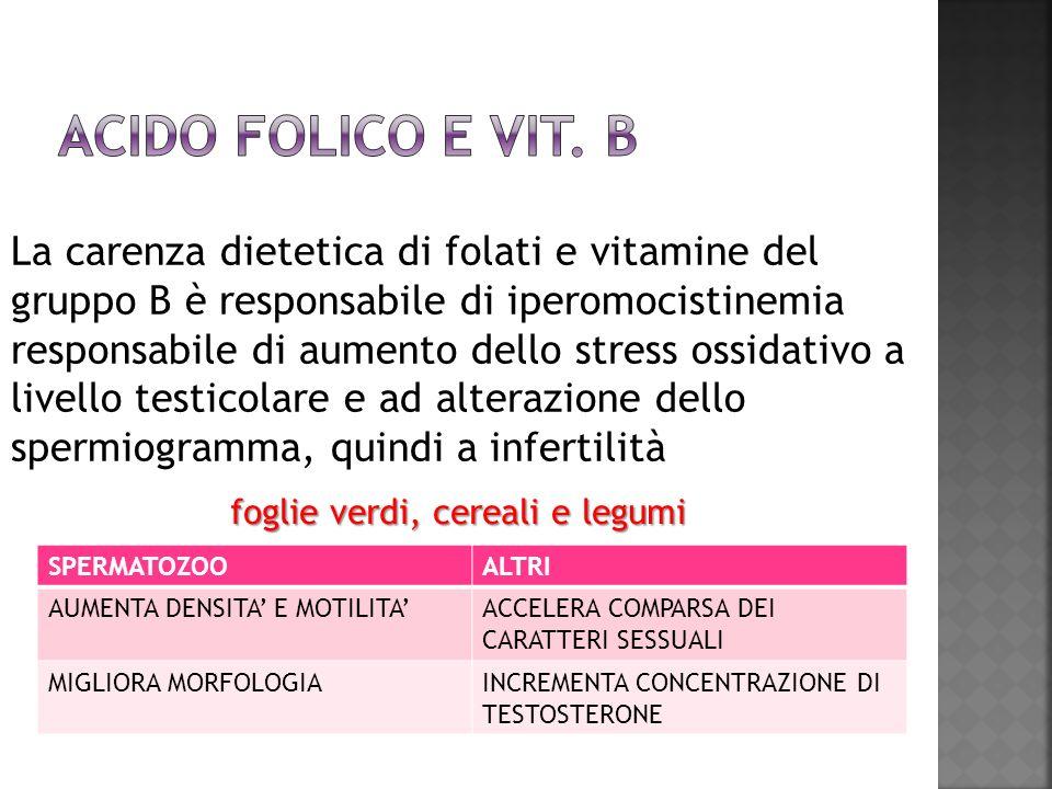 La carenza dietetica di folati e vitamine del gruppo B è responsabile di iperomocistinemia responsabile di aumento dello stress ossidativo a livello t