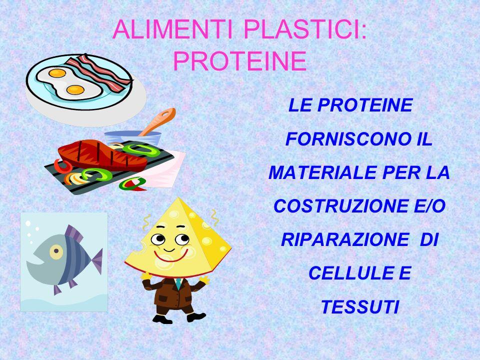 ALIMENTI PLASTICI: PROTEINE LE PROTEINE FORNISCONO IL MATERIALE PER LA COSTRUZIONE E/O RIPARAZIONE DI CELLULE E TESSUTI