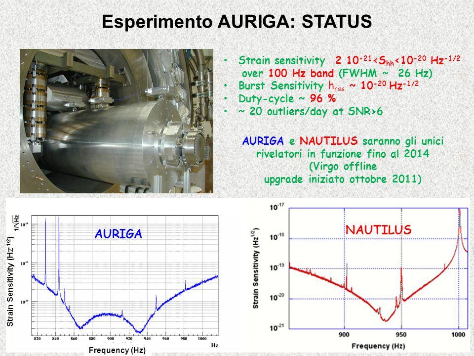 Strain sensitivity 2 10 -21 <S hh <10 -20 Hz -1/2 over 100 Hz band (FWHM ~ 26 Hz) Burst Sensitivity h rss ~ 10 -20 Hz -1/2 Duty-cycle ~ 96 % ~ 20 outliers/day at SNR>6 Esperimento AURIGA: STATUS AURIGA e NAUTILUS saranno gli unici rivelatori in funzione fino al 2014 (Virgo offline upgrade iniziato ottobre 2011) NAUTILUS AURIGA Strain Sensitivity (Hz -1/2 ) Frequency (Hz)