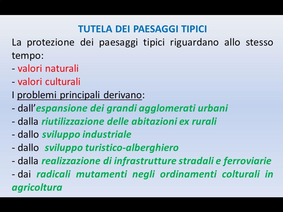 TUTELA DEI PAESAGGI TIPICI La protezione dei paesaggi tipici riguardano allo stesso tempo: - valori naturali - valori culturali I problemi principali