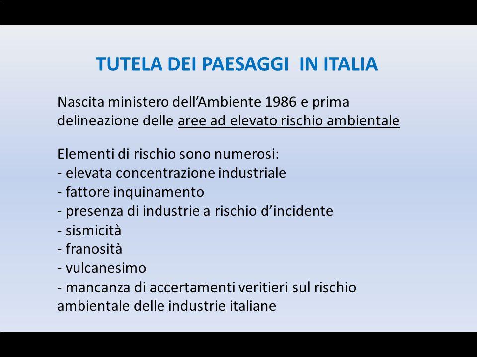 TUTELA DEI PAESAGGI IN ITALIA Nascita ministero dellAmbiente 1986 e prima delineazione delle aree ad elevato rischio ambientale Elementi di rischio so