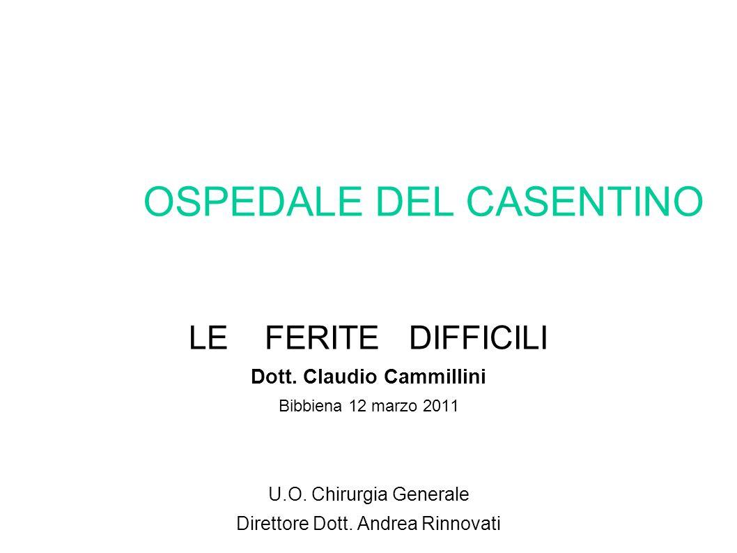 OSPEDALE DEL CASENTINO LE FERITE DIFFICILI Dott. Claudio Cammillini Bibbiena 12 marzo 2011 U.O. Chirurgia Generale Direttore Dott. Andrea Rinnovati