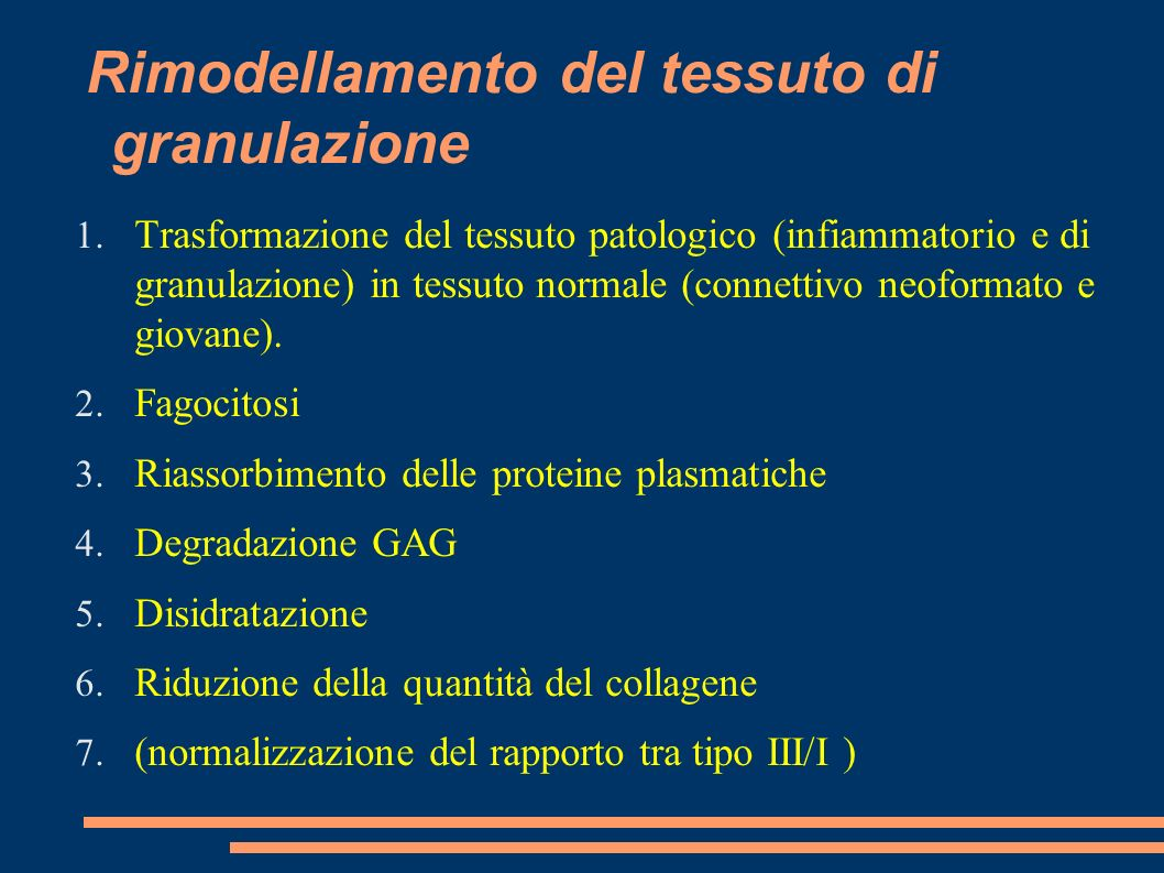 Rimodellamento del tessuto di granulazione 1. Trasformazione del tessuto patologico (infiammatorio e di granulazione) in tessuto normale (connettivo n