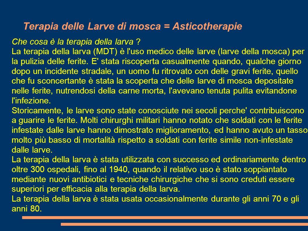 Terapia delle Larve di mosca = Asticotherapie Che cosa è la terapia della larva ? La terapia della larva (MDT) è l'uso medico delle larve (larve della