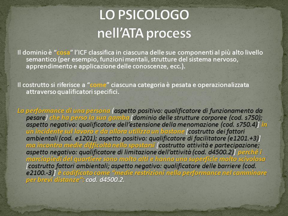 Il dominio è cosa lICF classifica in ciascuna delle sue componenti al più alto livello semantico (per esempio, funzioni mentali, strutture del sistema