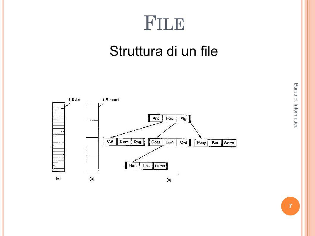 F ILE Un file ha una struttura interna che può essere più o meno complessa.