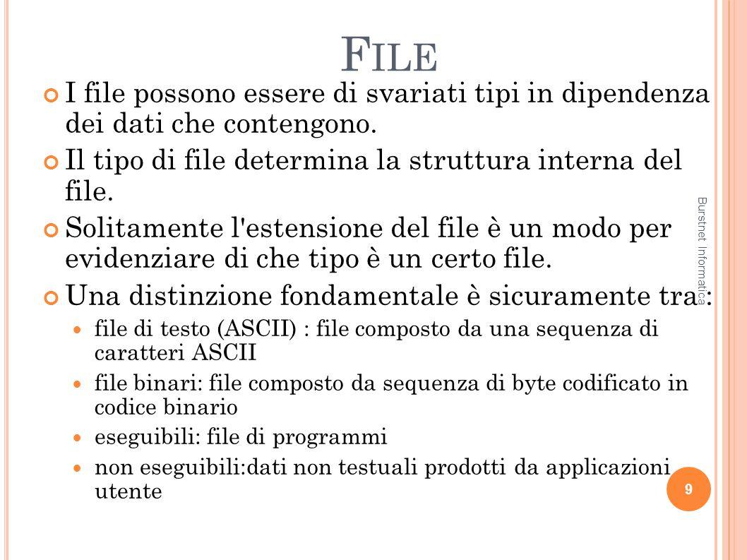 F ILE 20 Struttura di un disco un disco può essere diviso in una o più partizioni, porzioni indipendenti del disco che possono ospitare file system distinti il primo settore dei dischi è il cosiddetto master boot record (MBR) è utilizzato per fare il boot del sistema contiene la partition table (tabella delle partizioni) contiene l indicazione della partizione attiva Boot loader al boot, lMBR viene letto ed eseguito Burstnet Informatica