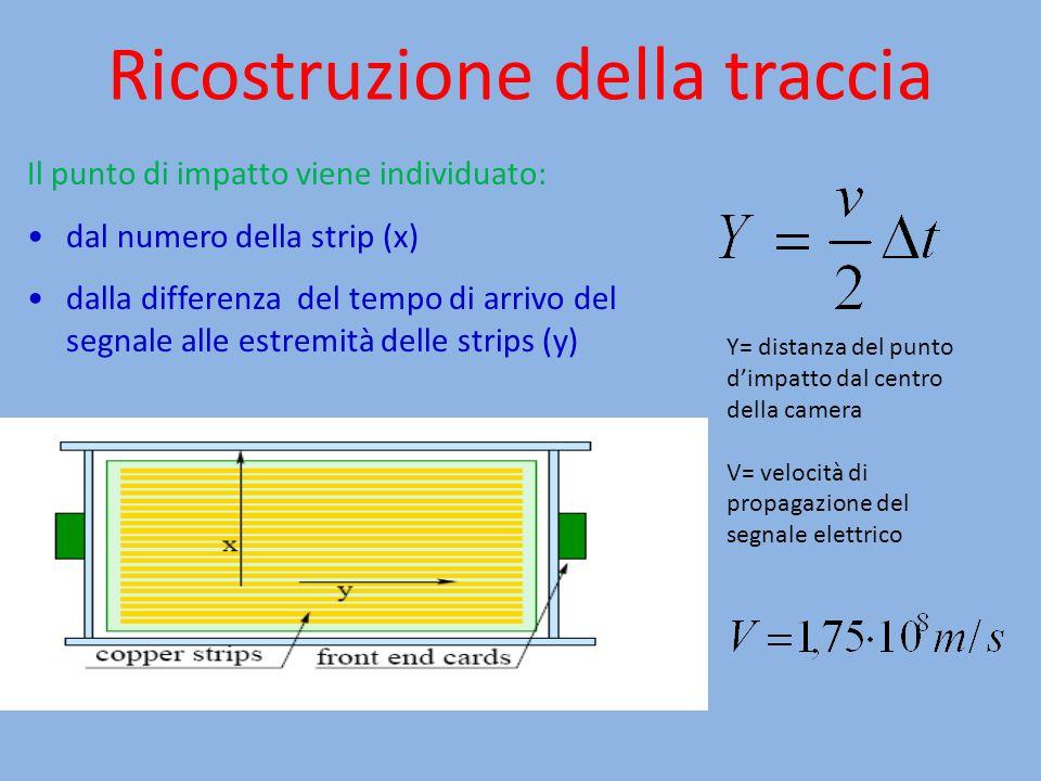 Ricostruzione della traccia Il punto di impatto viene individuato: dal numero della strip (x) dalla differenza del tempo di arrivo del segnale alle es