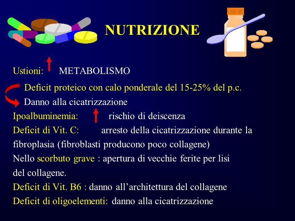NUTRIZIONE Ustioni: METABOLISMO Deficit proteico con calo ponderale del 15-25% del p.c. Danno alla cicatrizzazione Ipoalbuminemia: rischio di deiscenz
