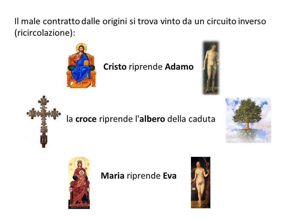 Il male contratto dalle origini si trova vinto da un circuito inverso (ricircolazione): Maria riprende Eva Cristo riprende Adamo la croce riprende l albero della caduta