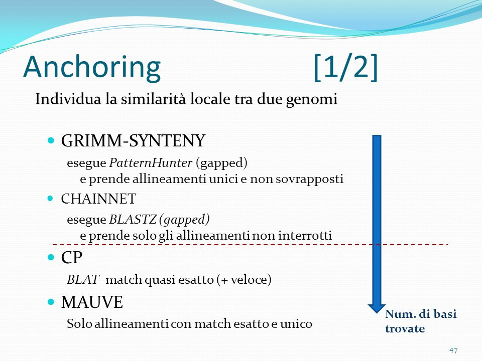 Anchoring[1/2] GRIMM-SYNTENY esegue PatternHunter (gapped) e prende allineamenti unici e non sovrapposti CHAINNET esegue BLASTZ (gapped) e prende solo