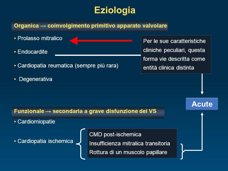Organica coinvolgimento primitivo apparato valvolare Prolasso mitralico Endocardite Cardiopatia reumatica (sempre più rara) Degenerativa Funzionale se