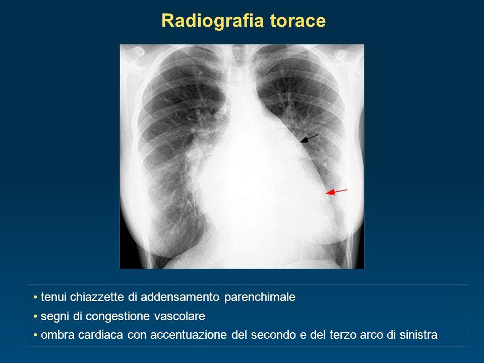 tenui chiazzette di addensamento parenchimale segni di congestione vascolare ombra cardiaca con accentuazione del secondo e del terzo arco di sinistra