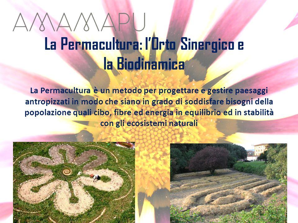La Permacultura: lOrto Sinergico e la Biodinamica La Permacultura è un metodo per progettare e gestire paesaggi antropizzati in modo che siano in grad