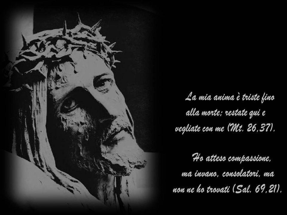 Oggi più che mai Gesù grida: Sitio, ho sete, manifestandoti la tristezza della sua anima.