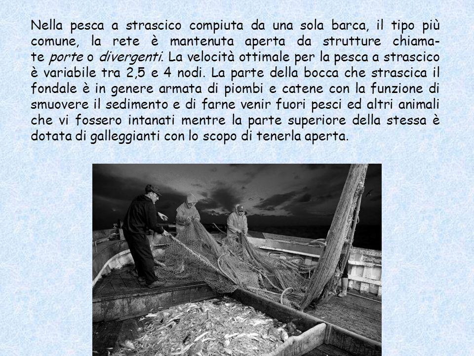 La pesca a strascico è un metodo di pesca che consiste nel trainare attivamente una rete da pesca sul fondo del mare. La rete può essere trainata da u