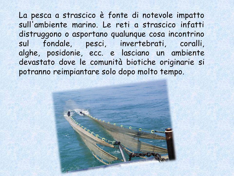 Nella pesca a strascico compiuta da una sola barca, il tipo più comune, la rete è mantenuta aperta da strutture chiama- te porte o divergenti. La velo