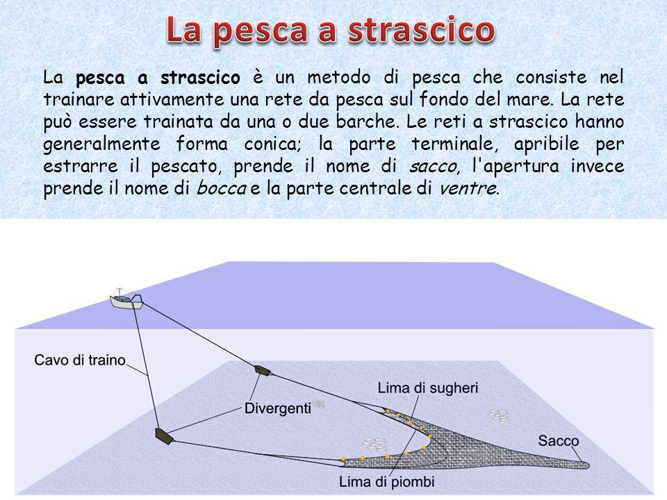 La pesca a strascico è un metodo di pesca che consiste nel trainare attivamente una rete da pesca sul fondo del mare.