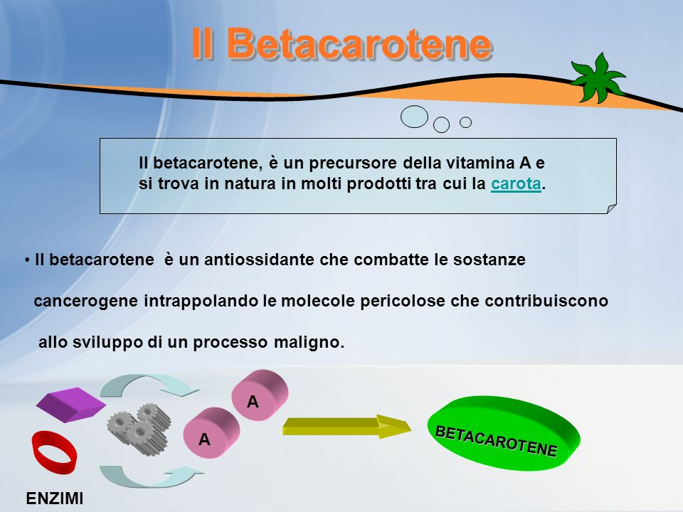 Il Betacarotene Il betacarotene, è un precursore della vitamina A e si trova in natura in molti prodotti tra cui la carota.carota Il betacarotene è un