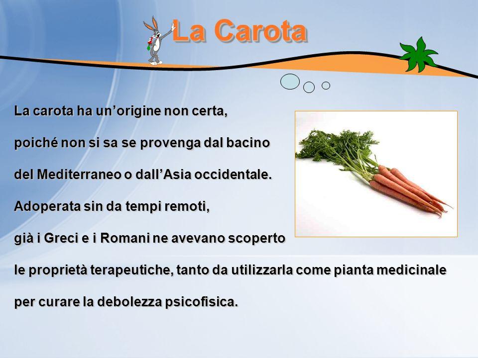La Carota La carota ha unorigine non certa, poiché non si sa se provenga dal bacino del Mediterraneo o dallAsia occidentale. Adoperata sin da tempi re