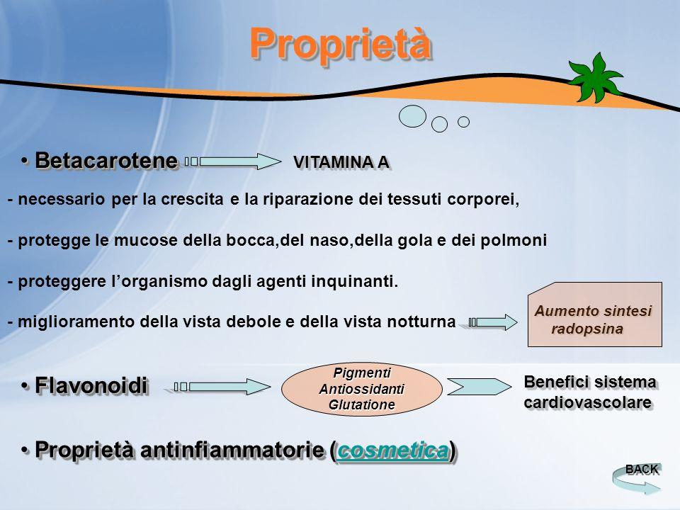 ProprietàProprietà Betacarotene Betacarotene VITAMINA A - necessario per la crescita e la riparazione dei tessuti corporei, - protegge le mucose della