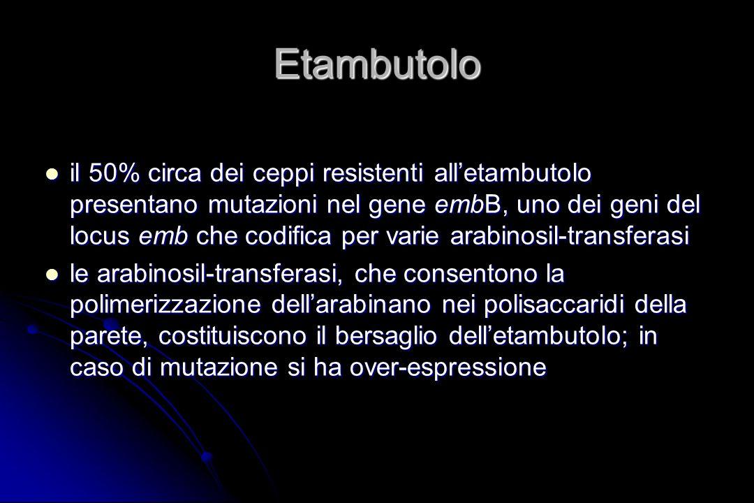 Etambutolo il 50% circa dei ceppi resistenti alletambutolo presentano mutazioni nel gene embB, uno dei geni del locus emb che codifica per varie arabi