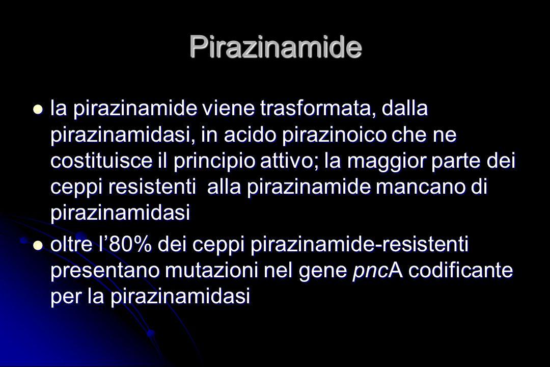 Pirazinamide la pirazinamide viene trasformata, dalla pirazinamidasi, in acido pirazinoico che ne costituisce il principio attivo; la maggior parte de