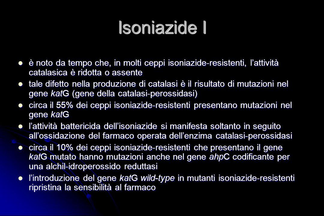 Isoniazide I è noto da tempo che, in molti ceppi isoniazide-resistenti, lattività catalasica è ridotta o assente è noto da tempo che, in molti ceppi i