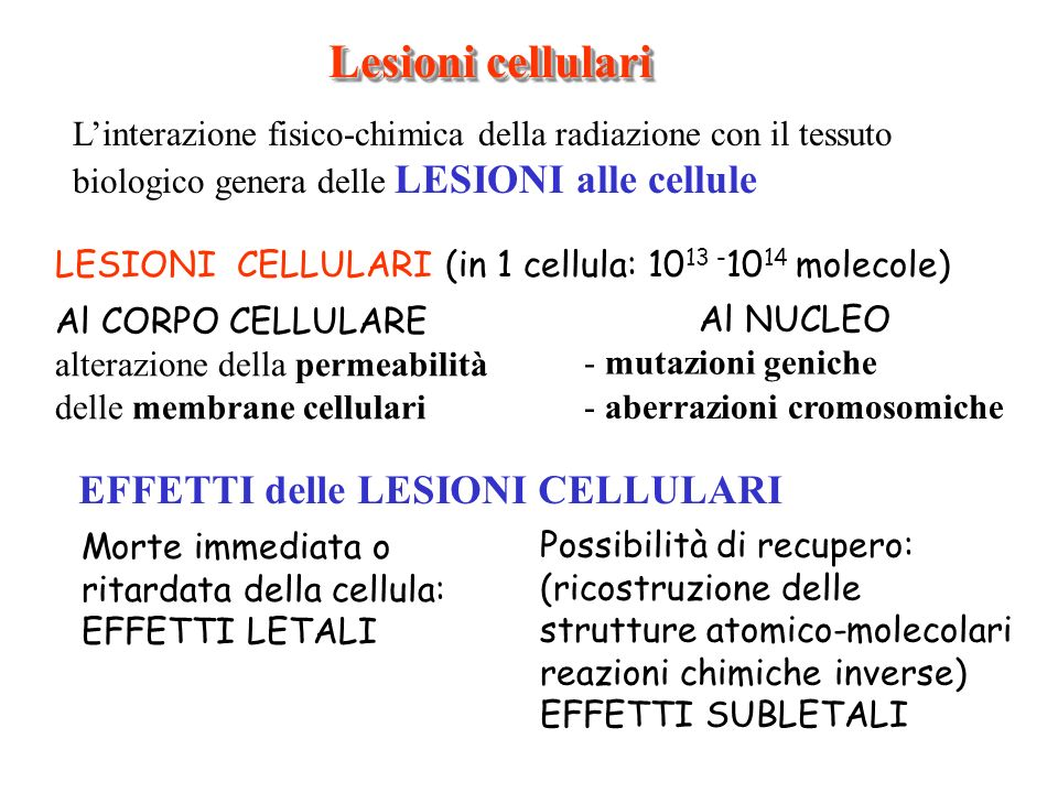 Lesioni cellulari LESIONI CELLULARI (in 1 cellula: 10 13 - 10 14 molecole) Al CORPO CELLULARE alterazione della permeabilità delle membrane cellulari