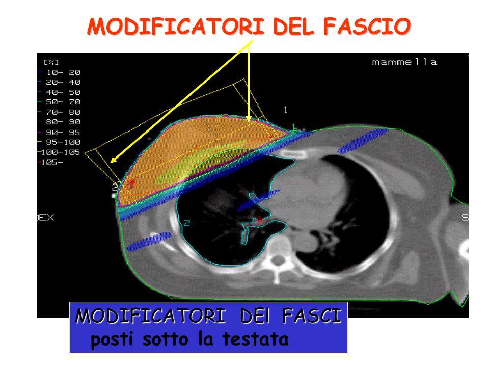 MODIFICATORI DEL FASCIO MODIFICATORI DEl FASCI posti sotto la testata