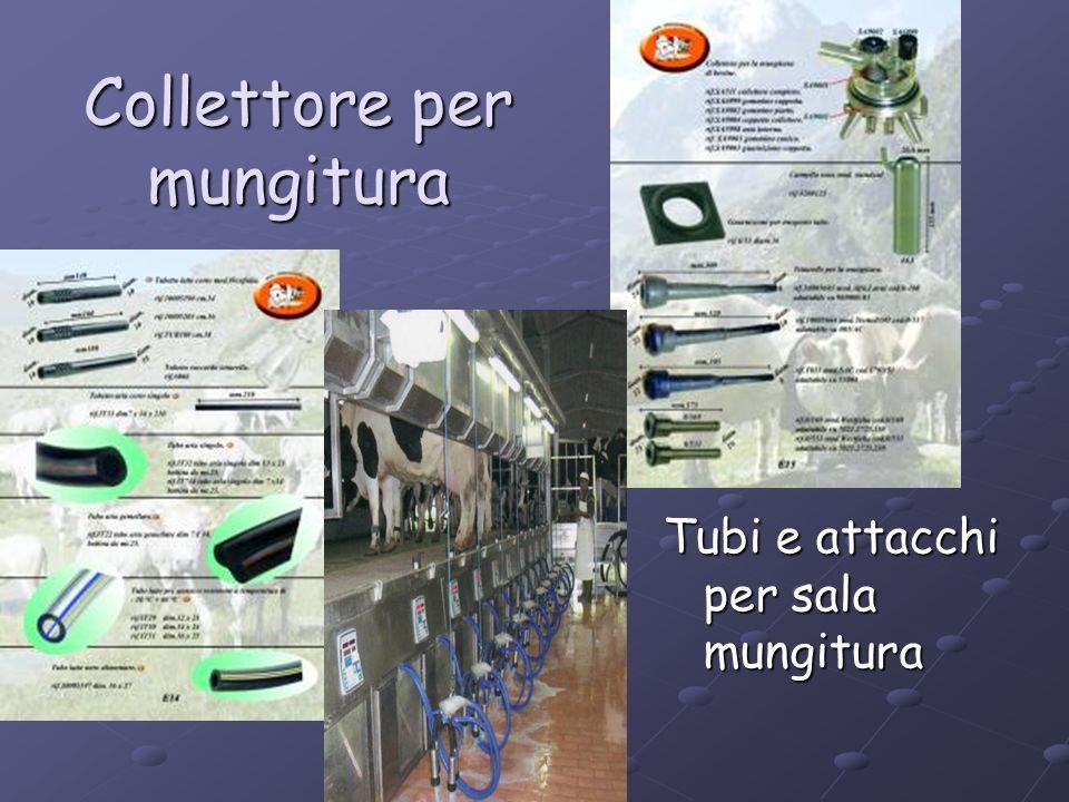 Collettore per mungitura Tubi e attacchi per sala mungitura