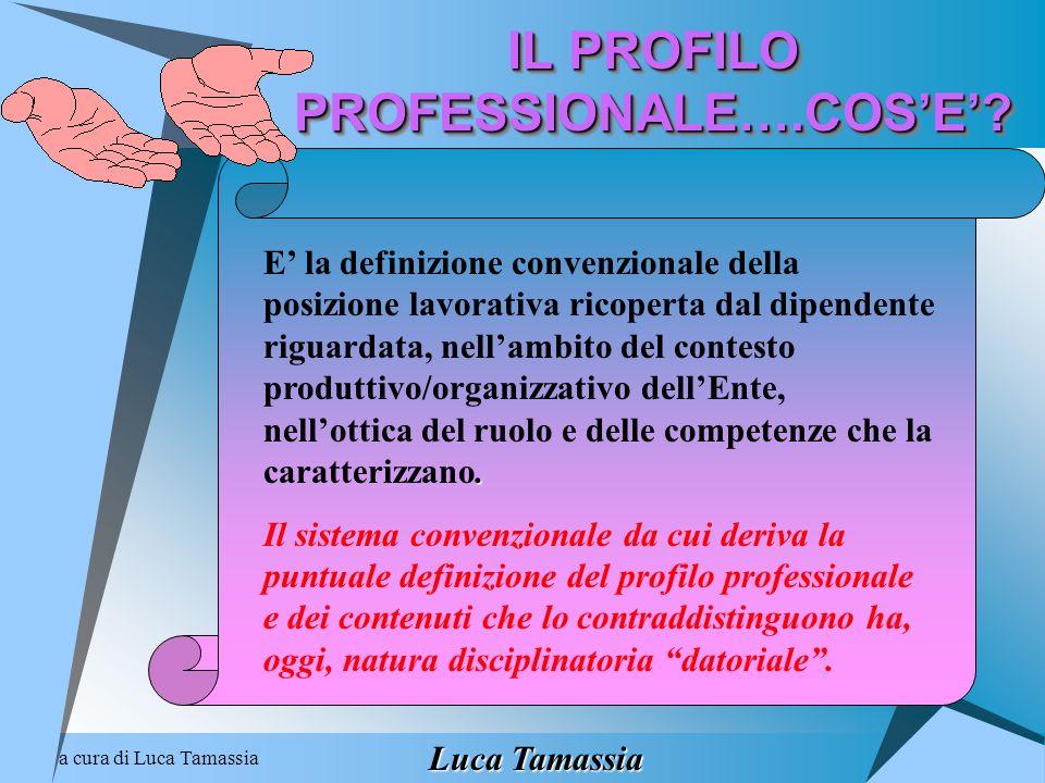 a cura di Luca Tamassia IL PROFILO PROFESSIONALE….COSE?. E la definizione convenzionale della posizione lavorativa ricoperta dal dipendente riguardata