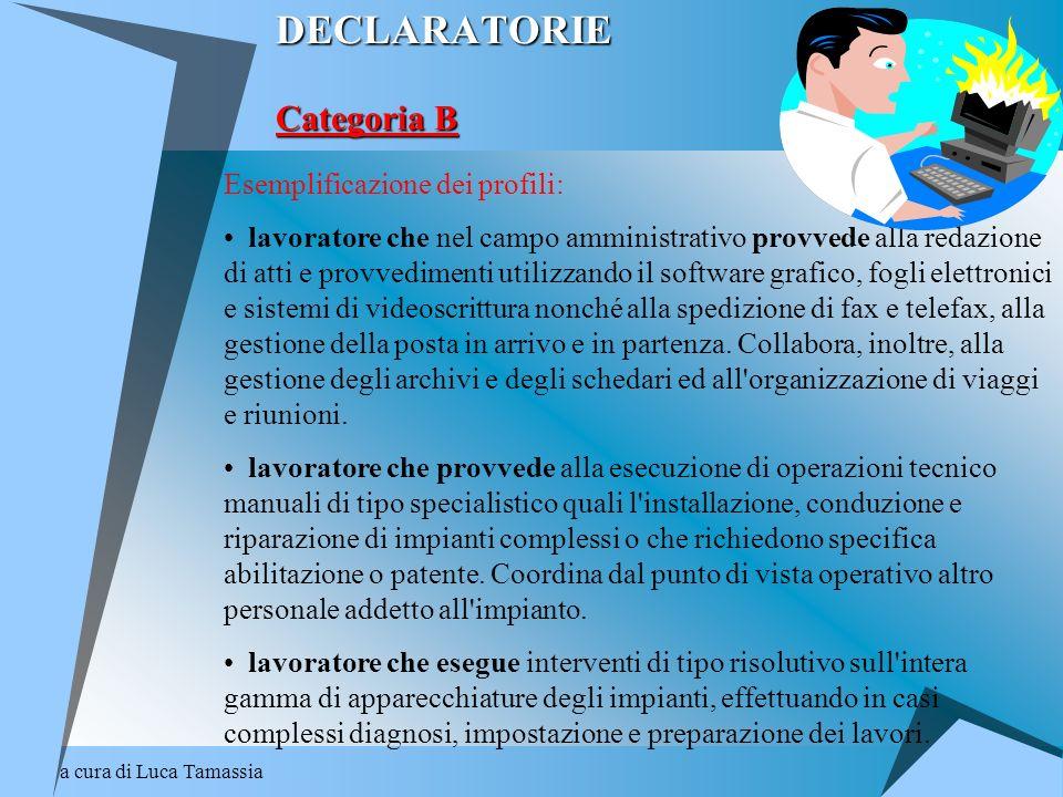 a cura di Luca Tamassia DECLARATORIE Categoria B Esemplificazione dei profili: lavoratore che nel campo amministrativo provvede alla redazione di atti