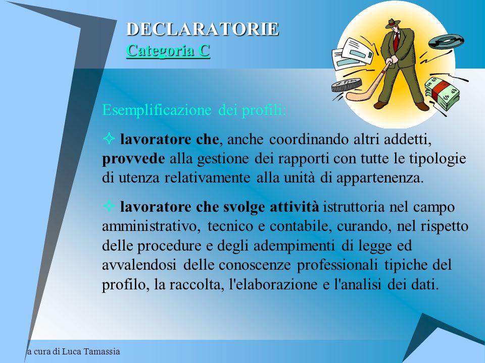 a cura di Luca Tamassia DECLARATORIE Categoria C Esemplificazione dei profili: lavoratore che, anche coordinando altri addetti, provvede alla gestione