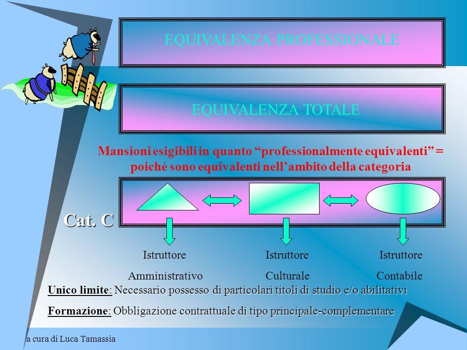 a cura di Luca Tamassia EQUIVALENZA PROFESSIONALE EQUIVALENZA TOTALE Mansioni esigibili in quanto professionalmente equivalenti = poiché sono equivale