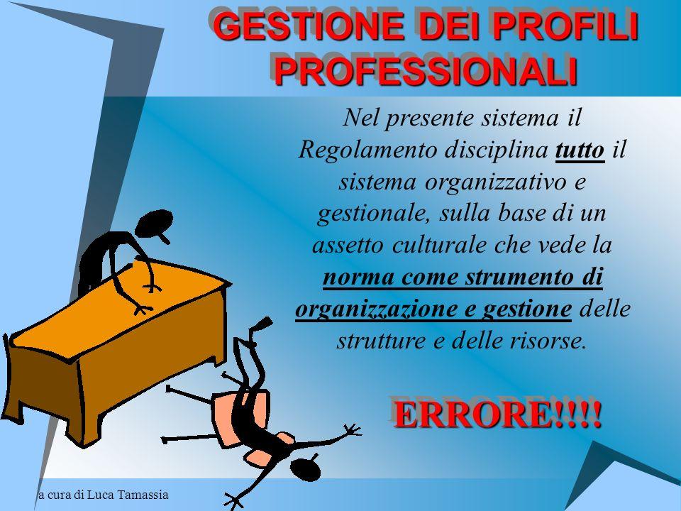 a cura di Luca Tamassia GESTIONE DEI PROFILI PROFESSIONALI Nel presente sistema il Regolamento disciplina tutto il sistema organizzativo e gestionale,
