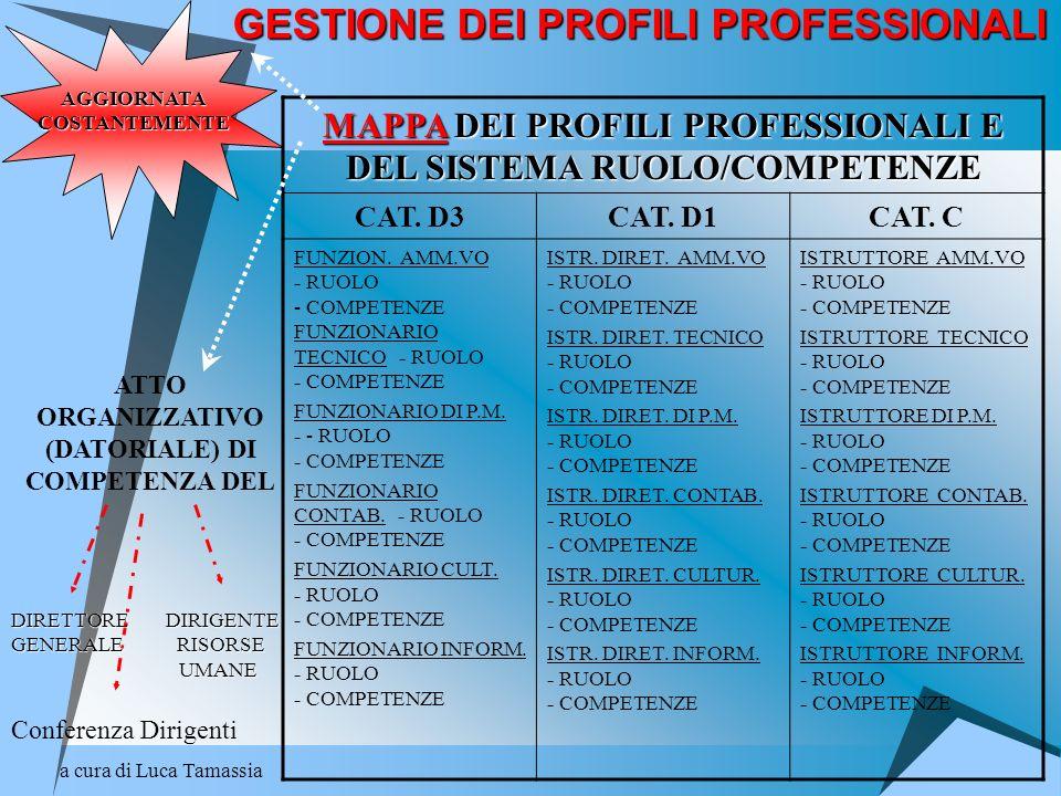 a cura di Luca Tamassia GESTIONE DEI PROFILI PROFESSIONALI MAPPA DEI PROFILI PROFESSIONALI E DEL SISTEMA RUOLO/COMPETENZE CAT. D3CAT. D1CAT. C FUNZION