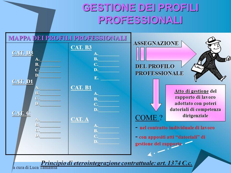 a cura di Luca Tamassia GESTIONE DEI PROFILI PROFESSIONALI MAPPA DEI PROFILI PROFESSIONALI CAT. B3 A._________ B._________ C._________ D._________ E.