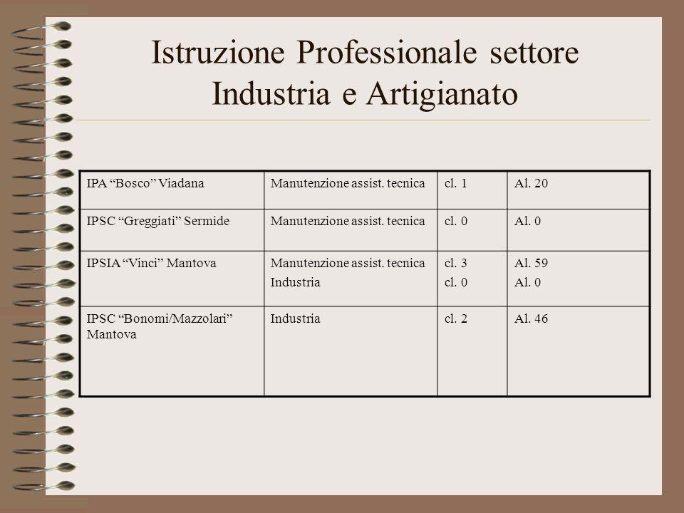 Istruzione Professionale settore Industria e Artigianato IPA Bosco ViadanaManutenzione assist. tecnicacl. 1Al. 20 IPSC Greggiati SermideManutenzione a
