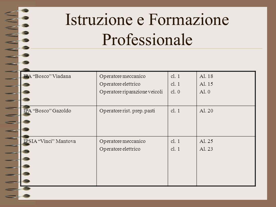 Istruzione e Formazione Professionale IPA Bosco ViadanaOperatore meccanico Operatore elettrico Operatore riparazione veicoli cl. 1 cl. 0 Al. 18 Al. 15