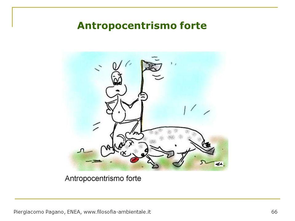 Piergiacomo Pagano, ENEA, www.filosofia-ambientale.it 66 Antropocentrismo forte