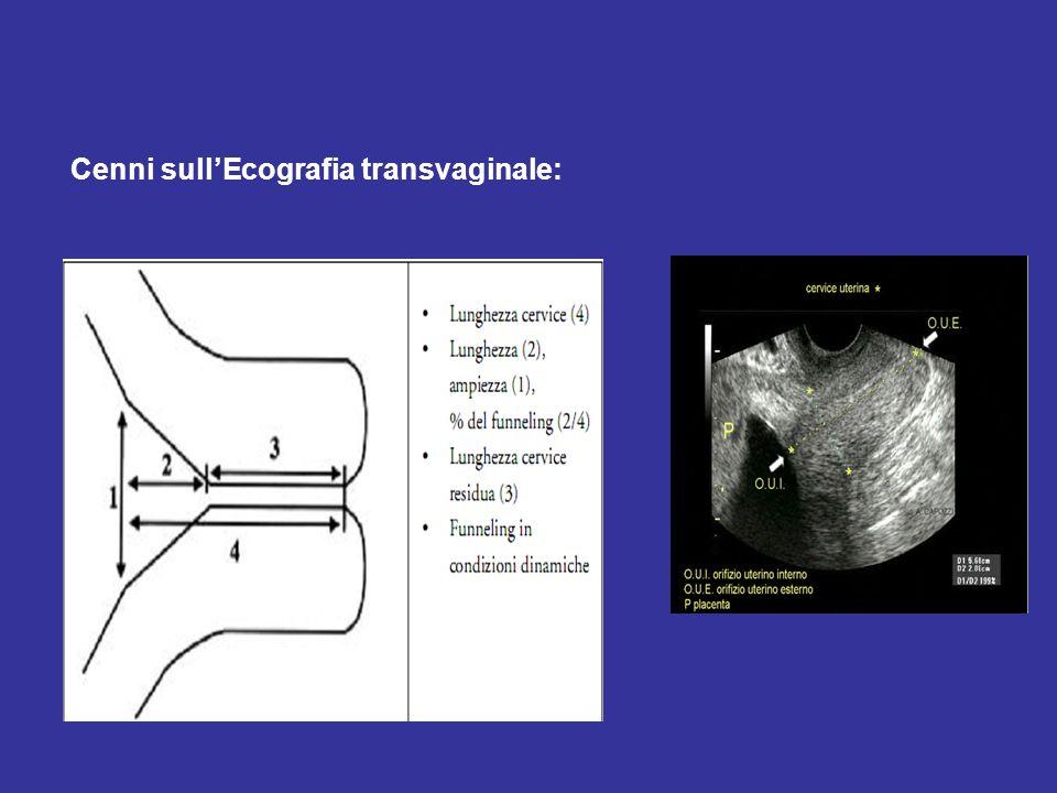 Cenni sullEcografia transvaginale: