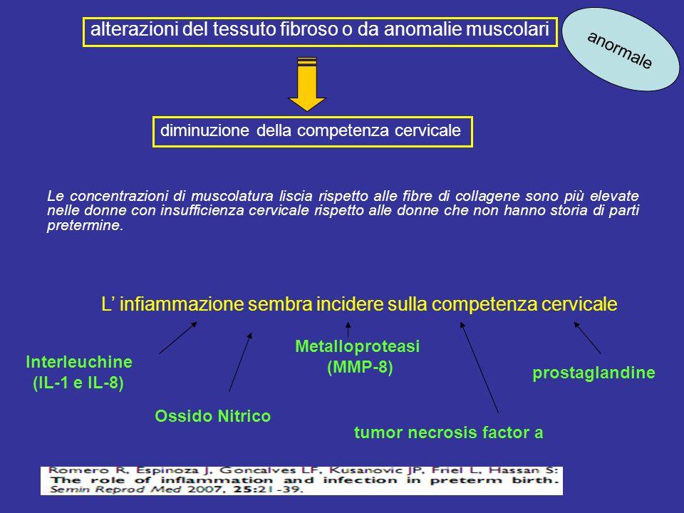 Le concentrazioni di muscolatura liscia rispetto alle fibre di collagene sono più elevate nelle donne con insufficienza cervicale rispetto alle donne