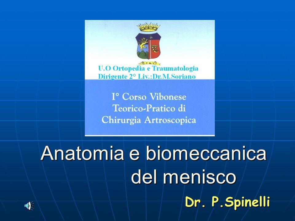 Anatomia e biomeccanica del menisco Anatomia e biomeccanica del menisco Dr. P.Spinelli