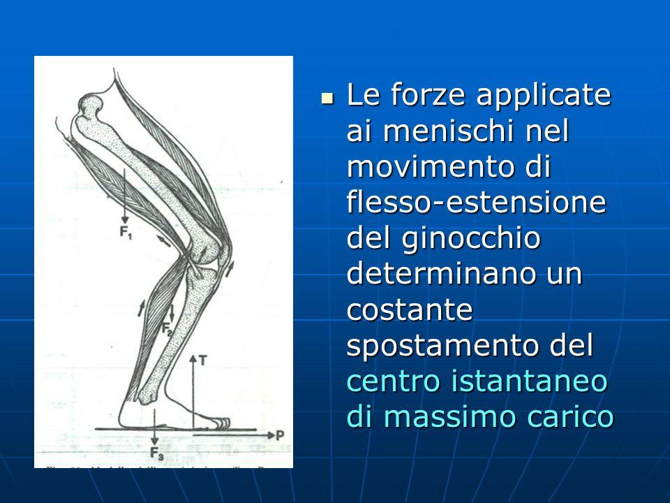 Le forze applicate ai menischi nel movimento di flesso-estensione del ginocchio determinano un costante spostamento del centro istantaneo di massimo c