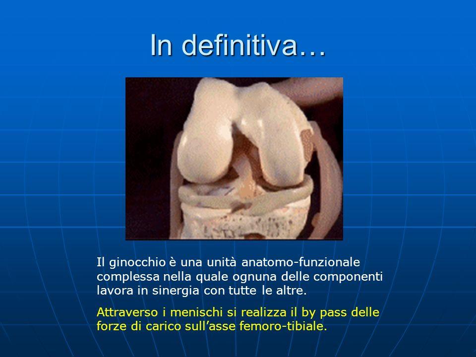 In definitiva… Il ginocchio è una unità anatomo-funzionale complessa nella quale ognuna delle componenti lavora in sinergia con tutte le altre. Attrav