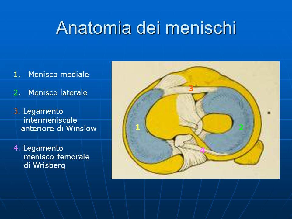 Anatomia dei menischi 1. Menisco mediale 12 3 4 2. Menisco laterale 3. Legamento intermeniscale anteriore di Winslow 4. Legamento menisco-femorale di