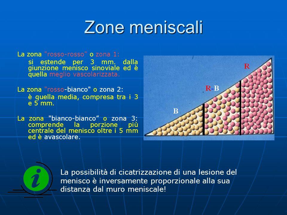 Zone meniscali La zona