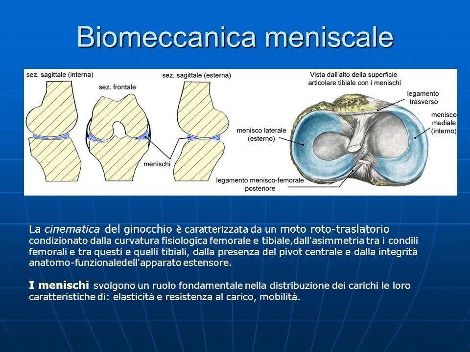 Biomeccanica meniscale La cinematica del ginocchio è caratterizzata da un moto roto-traslatorio condizionato dalla curvatura fisiologica femorale e ti