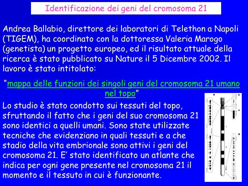 Andrea Ballabio, direttore dei laboratori di Telethon a Napoli (TIGEM), ha coordinato con la dottoressa Valeria Marogo (genetista) un progetto europeo